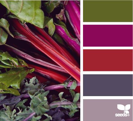 Design Seeds ColorChard